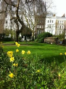 rosmead garden 2